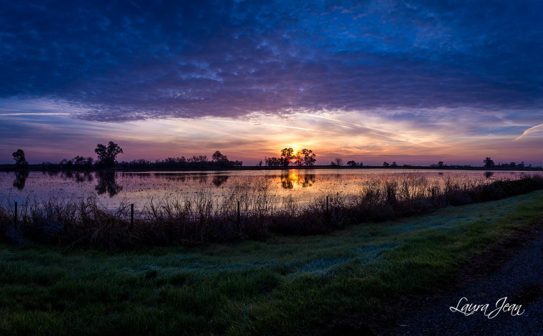 Sunday Sunrise VII
