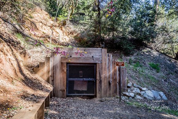 El Dorado Mine