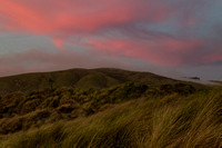 Pink Skies at Salmon Creek