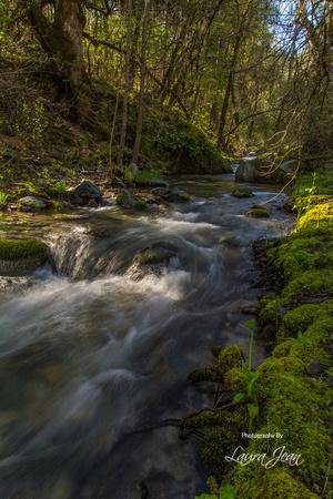 Clear Creek Flowing